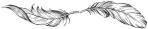 Plume cabinet maigrir par hypnose chromotherapie drainage lymphatique
